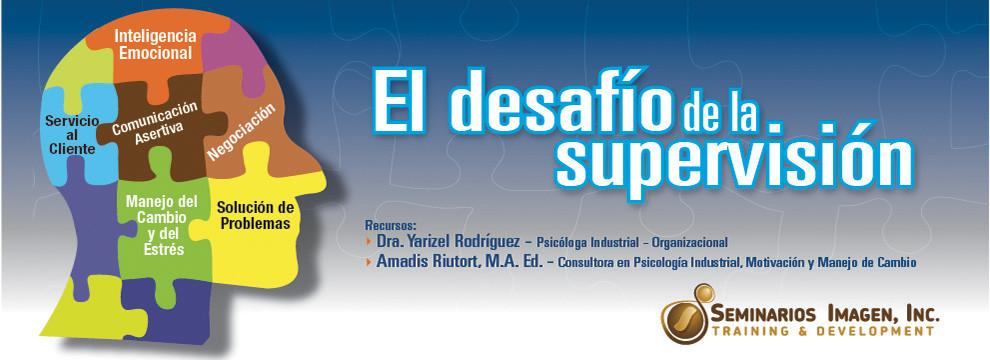 El-Desafio-de-la-supervision-2013