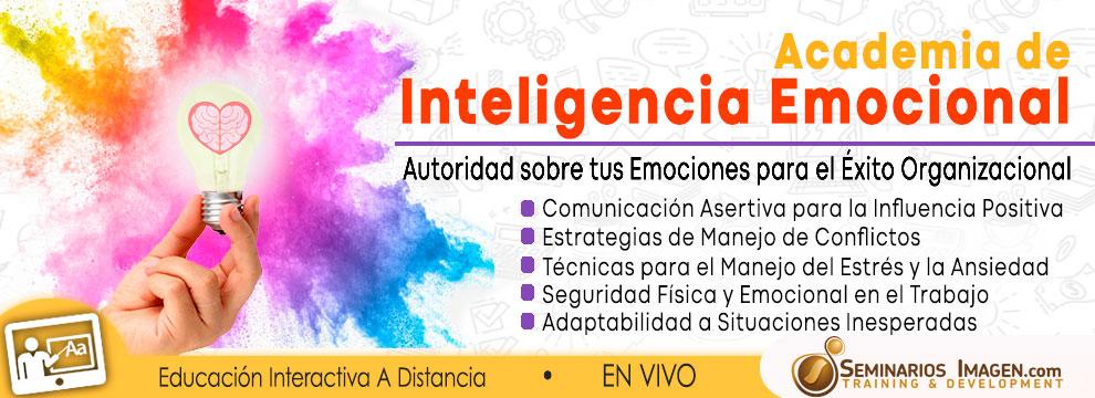 Academis-Inteligencia-Emocional
